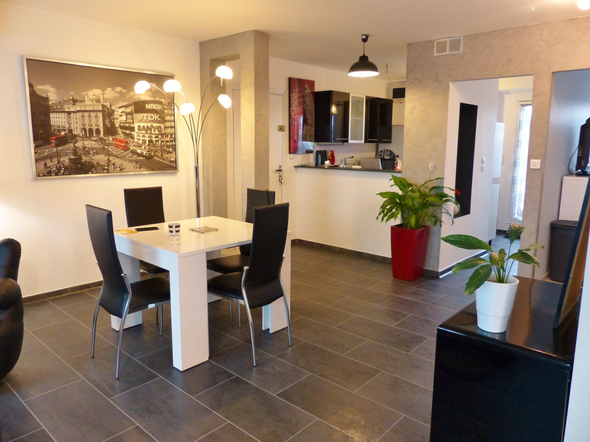 appartement 2 pieces a vendre - macon